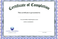 005 Template Ideas Microsoft Word Certificate Free Download throughout Downloadable Certificate Templates For Microsoft Word