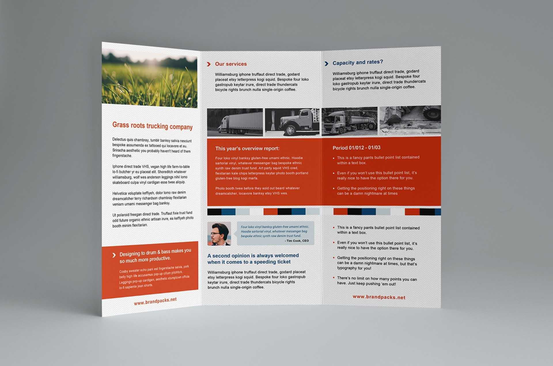 024 Template Ideas Free Trifold Brochure Stunning Templates Within Free Illustrator Brochure Templates Download
