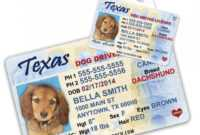 043 Printable Service Dog Id Card Template Staggering Ideas throughout Texas Id Card Template