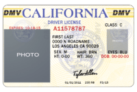 25 Images Of California Id Card Template Photoshop with regard to Texas Id Card Template