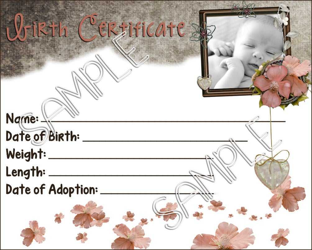 Baby Doll Birth Certificate Template ] - Amazon Com My In Baby Doll Birth Certificate Template