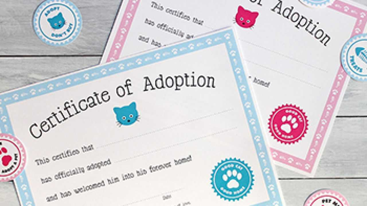 Free Printable Cat Adoption Kit | Chickabug For Toy Adoption Certificate Template