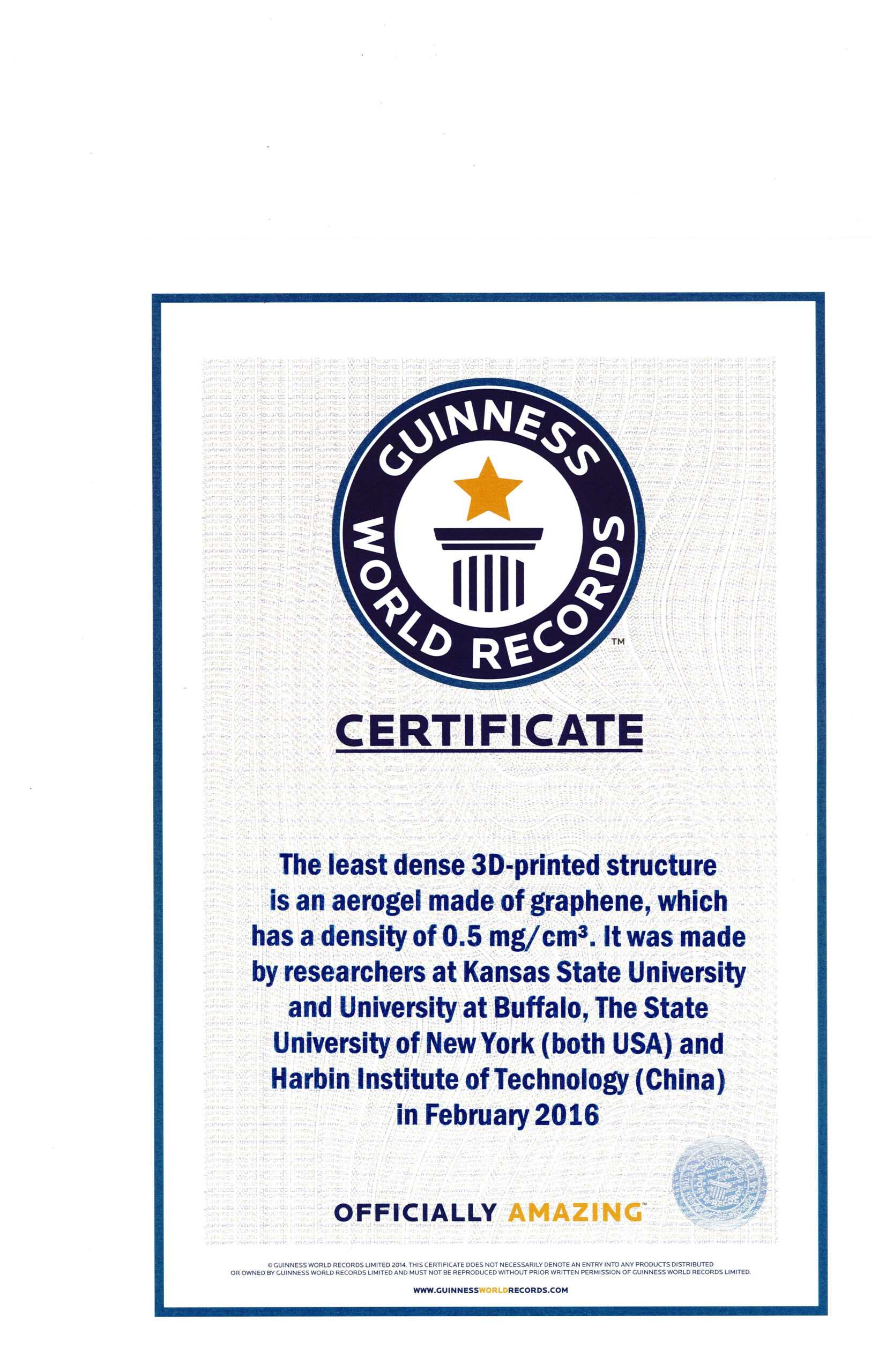 Guinness World Records Guinness World Record Certificate With Regard To Guinness World Record Certificate Template