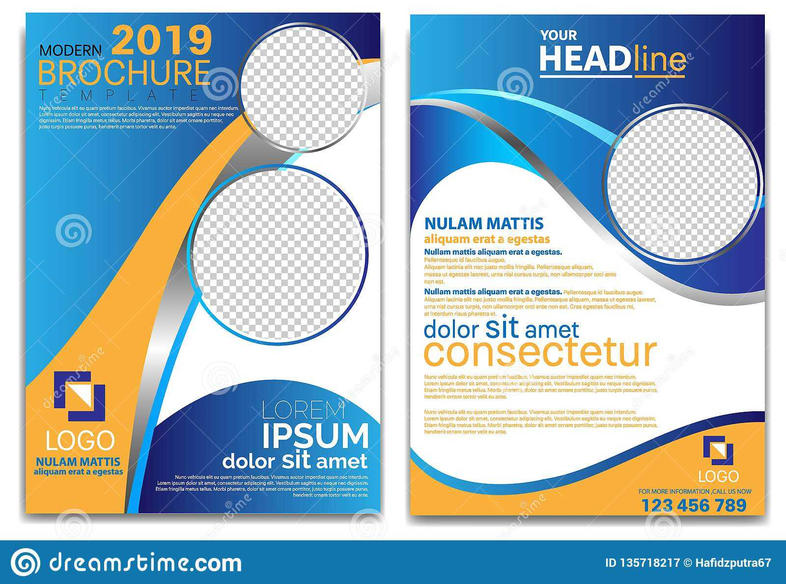 Modern Brochure Template 2019 And Professional Brochure Intended For Professional Brochure Design Templates