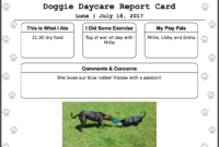 Report Examples Dog Walking Card Template Doggiedashboard inside Dog Grooming Record Card Template